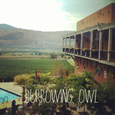 Burrowing Owl Winery & Estate