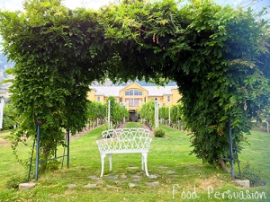 Tinhorn Creek Vineyards secret spot