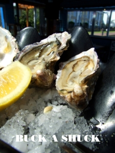 oysters BUCK A SHUCK